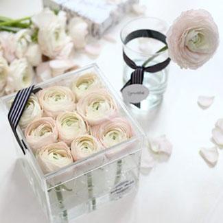 ranunculus, box, flower, boglárka, púder, akril, akrildoboz, átlátszó, doboz, virág, virágtrendek